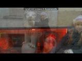 «я и мои друзья» под музыку Бьянка - Весна-Лето 3. Picrolla